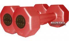 Набор из двух пластиковых гантелей InterAtletika по 2 кг Красный (ST 560.2-2)