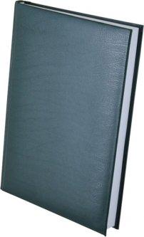 Ежедневник недатированный Buromax Expert А5 из искусственной кожи на 288 страниц Зеленый (BM.2004-04)