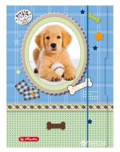 Папка для тетрадей Herlitz Pretty Pets Dog А4 на резинке (10671329D)