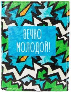 Мужская обложка для ID-паспорта Passporty KRIVD-82 Разноцветная (2900000133099)