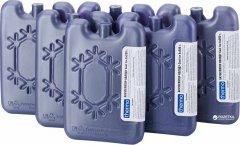Аккумуляторы холода Thermo Cool-Ice 6 x 200 г (4820152617392)