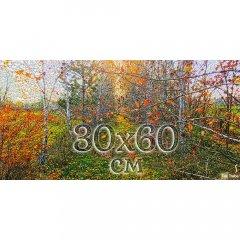 Друк на панорамному бавовняному полотні 30х60 см із підрамником Ra