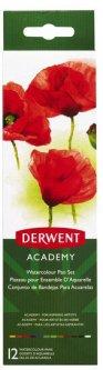 Набор акварельных красок Derwent Academy 12 цветов + кисточка (2301955)