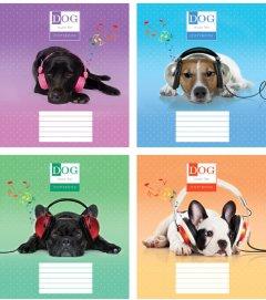 Набор тетрадей ученических Мрії збуваються Собаки в наушниках B5 клетка 24 листа на скобе картонная обложка 4 дизайна 16 шт (TA5.2411.3033к)