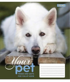 Набор тетрадей ученических 1 Вересня Dog loyality А5 12 листов в клетку 25 шт (765412)
