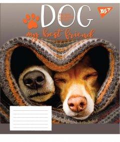 Набор тетрадей ученических YES Dog friend А5 12 листов в косую линейку без дополнительной линии 25 шт (765501)