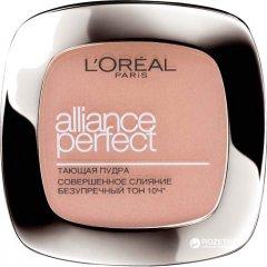 Компактная пудра для лица L'Oreal Alliance Perfect D5 - Бежево-золотистый (3600523166039)