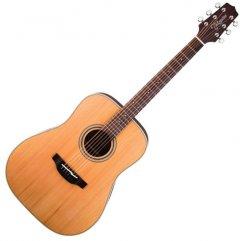 Гитара акустическая Takamine GD20 Natural Satin (224114)