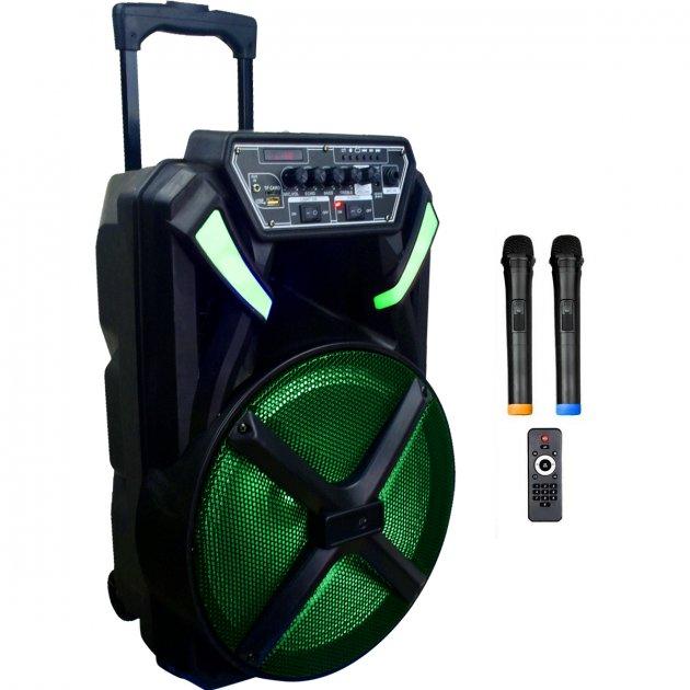 Автономная активная акустическая система BiG 300BAT два радио микрофона, караоке - изображение 1