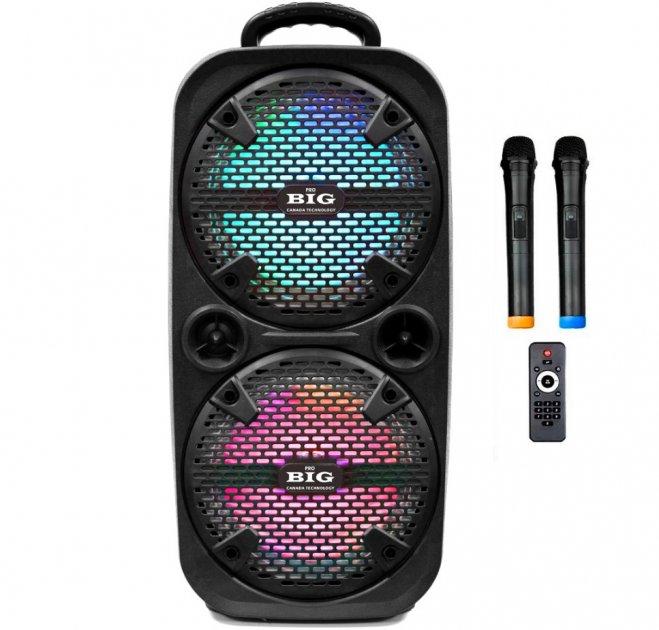 Автономная активная акустическая система BIG 220ENCORE два радио микрофона, караоке - изображение 1