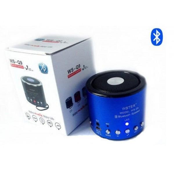 Портативная колонка с радио и Bluetooth WS-Q9 - зображення 1