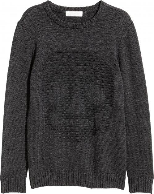 Джемпер H&M 5498526 146-152 см Темно-сірий (hm2000000242170) - зображення 1