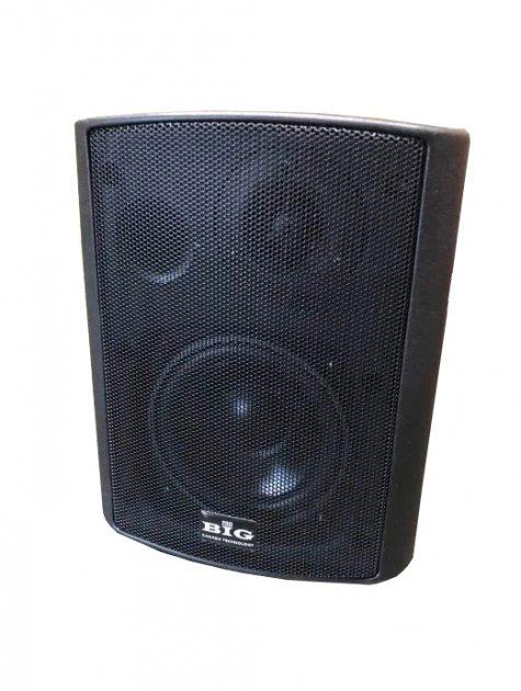 Настінна акустична система BIG MSB504-100V BLACK - зображення 1