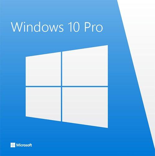 Операційна система Microsoft Windows 10 Професійна 64-bit Російська на 1ПК (OEM версія для збирачів) (FQC-08909) - зображення 1