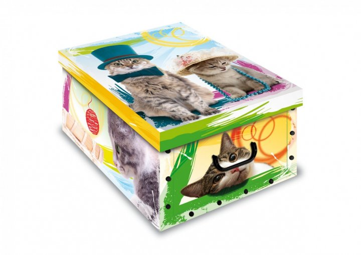Коробка картонная с пластиковыми ручками Evoluzione 40 х 50 х 25 см Два кота в шляпах (19) - зображення 1