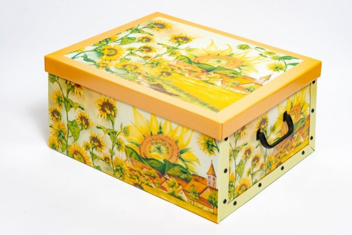 Коробка картонная с пластиковыми ручками Evoluzione 40 х 50 х 25 см Подсолнухи (12) - зображення 1