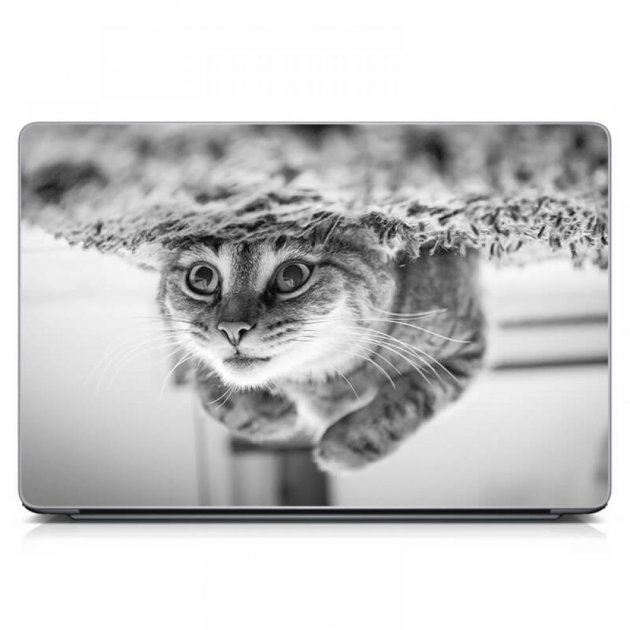 """Универсальная наклейка на ноутбук 15.6""""-13.3"""" 380х250 мм IdeaClock Забавный кот Матовая - изображение 1"""