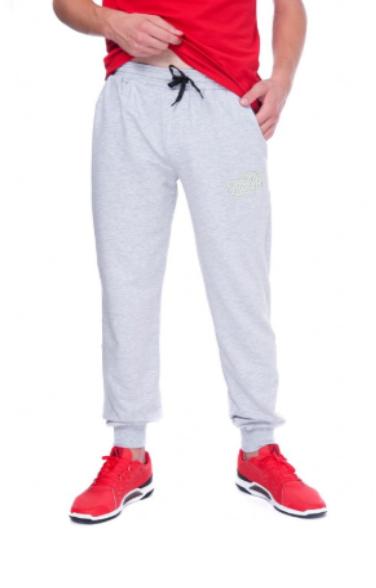 Спортивні штани URBAN SHSS4 UR (48-50) L Світло-сірий (AN-000055) - зображення 1