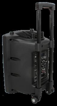 Портативна акустична система IBIZA PORT8UHF-BT