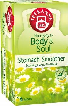 Чай трав'яний пакетований Teekanne Гармонія тіла 20 пакетиків (4009300006893)