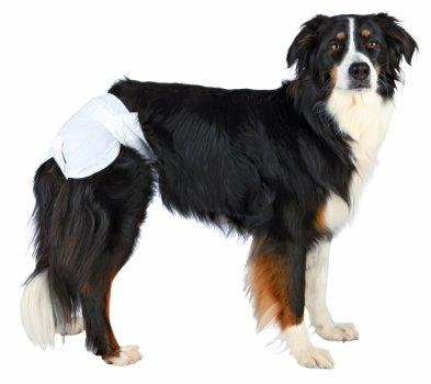 Памперси для собак (сучок) Trixie 23631 20-28 см 12шт (4011905236315)