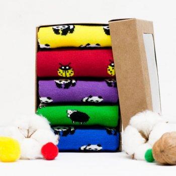 Набір шкарпеток The Pair of Socks ZOO Box 077 5 пар Різнокольоровий M