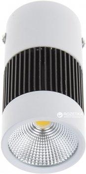 Світлодіодний світильник DL Brille LED-217/8W NW WH (32-177)
