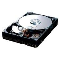 "Жорсткий диск Samsung Spinpoint T 500ГБ 7200об/м 16МБ 3.5"" SATA II (HD501LJ) Refurbished"