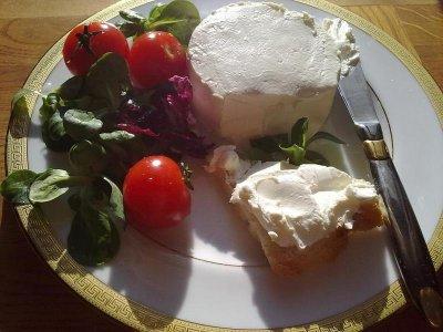 Закваска Zakvaskin для Формажио Фреско - крем-сыр 1 г 1 комплект закваска + фермент