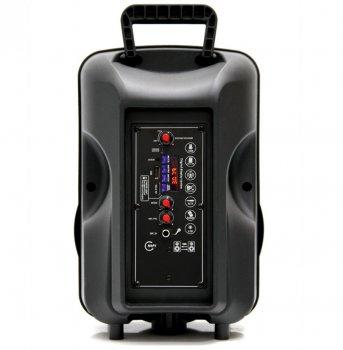 Автономная активная акустическая система BIG 804GALAXY BT+ Шнуровой микрофон караоке