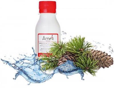 Парфюмированная вода для мужчин Ameli 089 Версия Invictus Aqua (Paco Rabanne) 100 мл (ROZ6205054686)