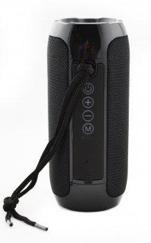 Портативна бездротова Bluetooth стерео колонка T&G 117 Чорна (117 Black)