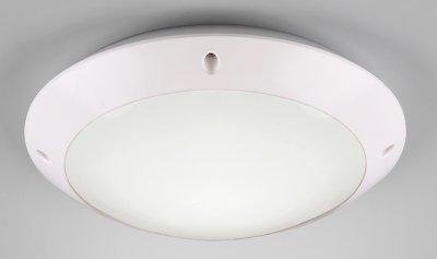 Стельовий світильник Reality Camaro (R60501031)