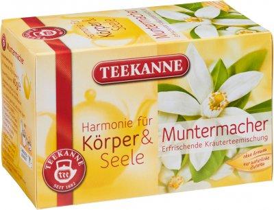 Чай травяной пакетированный Teekanne Гармония Бодрость 20 пакетиков (4009300008897)