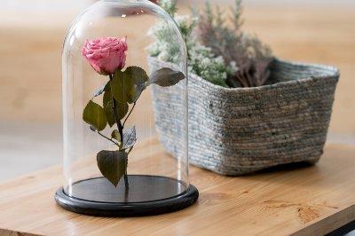 Роза в скляній колбі Рожевий кварц.