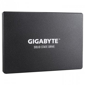 Gigabyte GP-GSTFS31120GNTD (GP-GSTFS31120GNTD)