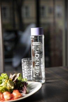 Упаковка минеральной среднегазированной воды Enjoy Содовая 0.5 л х 12 бутылок (4820014495403)