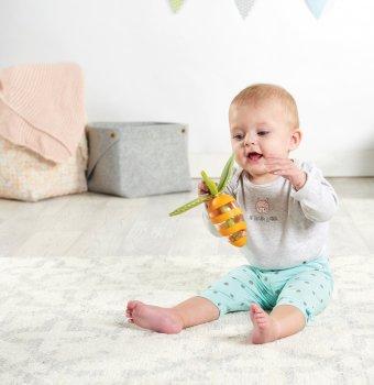 Брязкальце-прорізувач Tiny Love Морквина (1113300458)