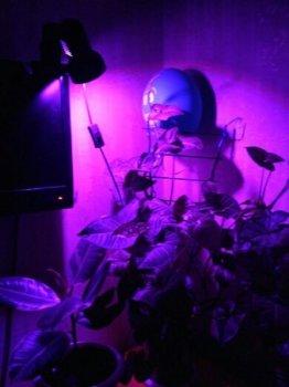 Фитолампа GreenHouse GR-8 с светильником-прищепка