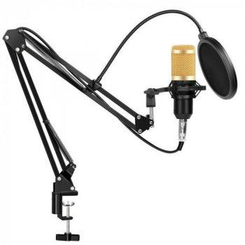 Студийный конденсаторный микрофон Green Audio BM-800 с пантографом и ветрозащитой