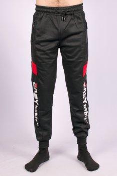 Штани спортивні чоловічі з манжетами Fashion WK-9651-2