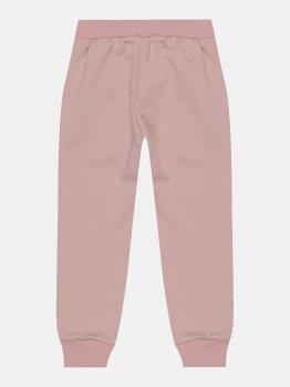 Спортивные штаны Robinzone Весна 2021 3062111 Пудра темная