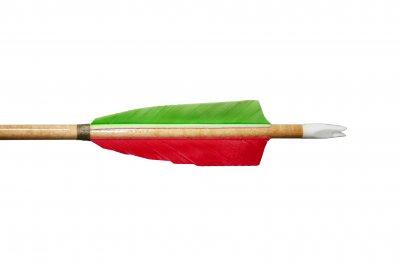 Стріла Scythian archery Амазонка 1 шт.