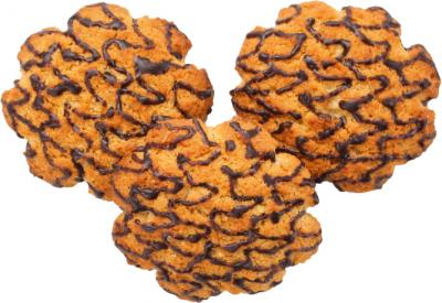 Печенье сдобное Чарівна мозаїка Шоколадный калейдоскоп 0.5 кг (2820163075497)