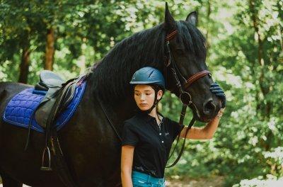 Подарунковий сертифікат на абонемент 12 занять верхової їзди + активна прогулянка на коні в подарунок