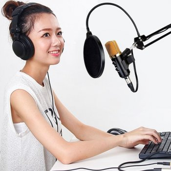 Студійний мікрофон Music D. J. M800 зі стійкою і поп-фільтром