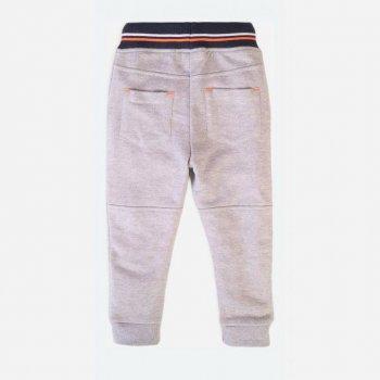 Спортивные штаны Minoti Samui 8 16200 Серые