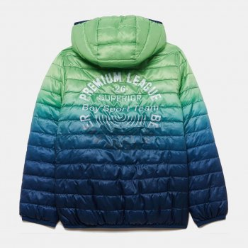 Демисезонная куртка OVS 1107556 Green