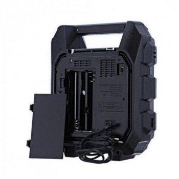 Акустическая система Golon радиоприемник Bluetooth колонка с радио и светомузыкой Чёрная (RX699BT)