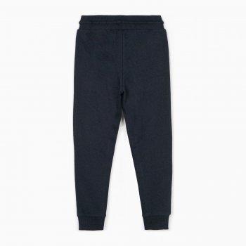 Спортивные штаны Zippy ZB0403_487_12 Темно-синие